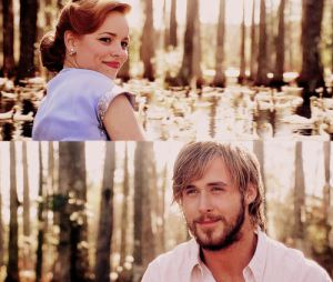 the-notebook-the-notebook-32319114-500-423